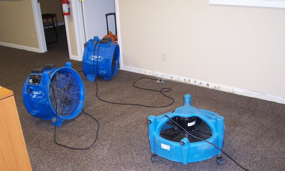 Water Damage Restoration Palm Harbor Elite Recovery Team